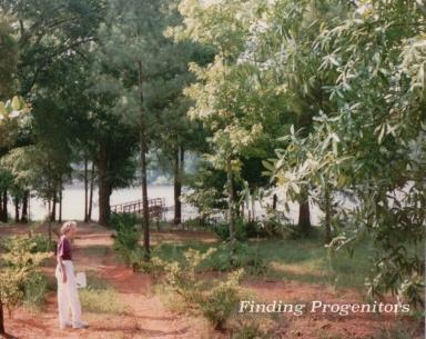 To the Meetze Cemetery 1996